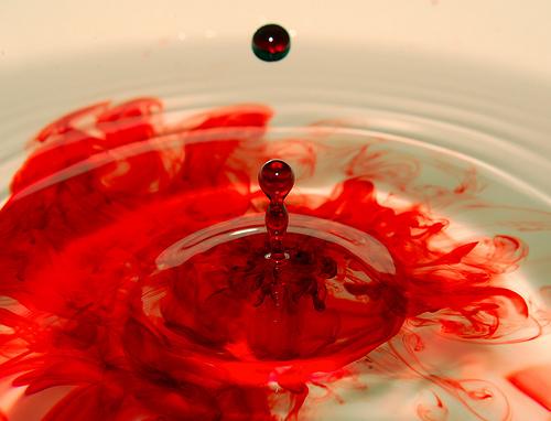 one drop of blood brave fish. Black Bedroom Furniture Sets. Home Design Ideas
